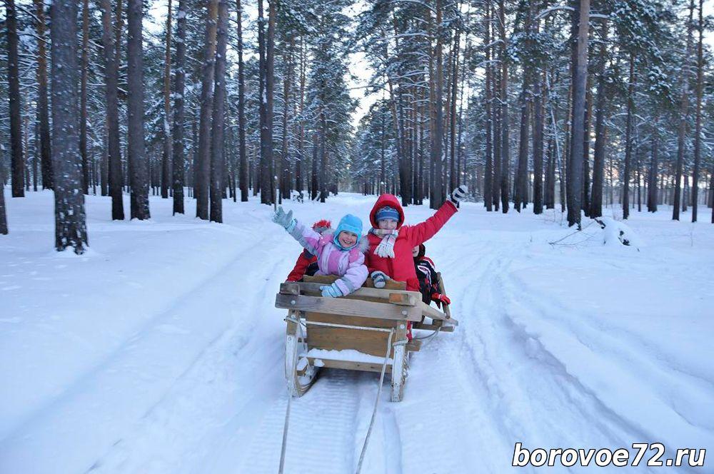 Новый год на базе отдыха омск